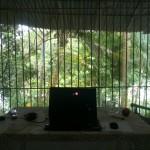 Blick in mein aktuelles Büro..